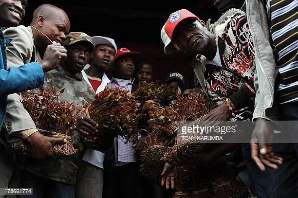 Photo made July 29 2013 shows traders posing with their merchandise at a local khat market in Kenya's misty central highlands region of Meru Khat...