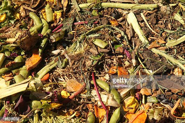 A photo of a compost heap in a garden