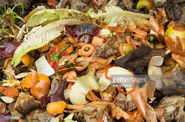 Photo of a compost heap with food scraps sitting on top