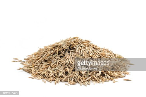 Photo of a neat pile of grass seed before a white background