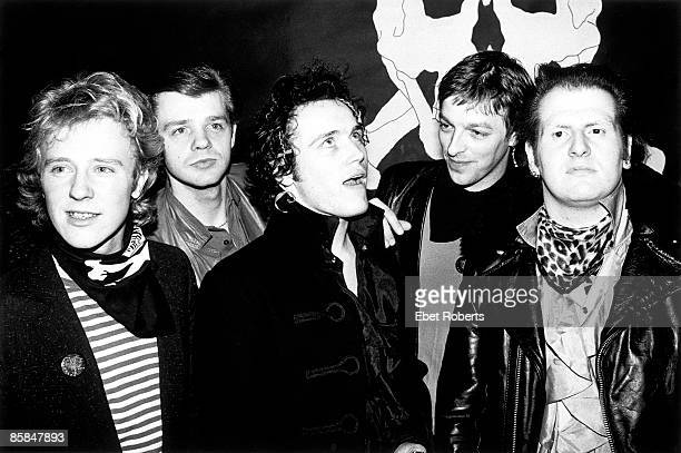 Photo of ADAM THE ANTS