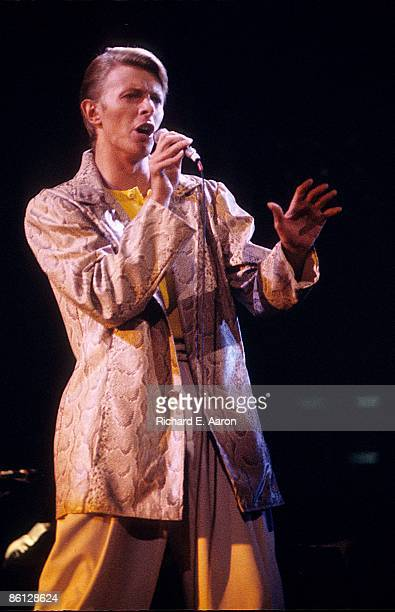 GARDEN Photo of David BOWIE performing live onstage on Low/Heroes 1978 World Tour