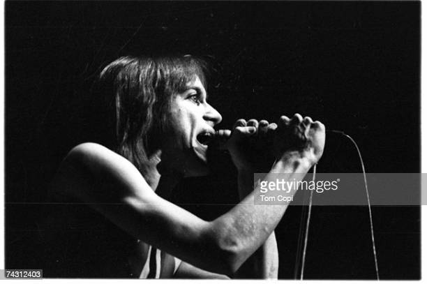 Photo of Iggy Pop Photo by Tom Copi/Michael Ochs Archives/Getty Images
