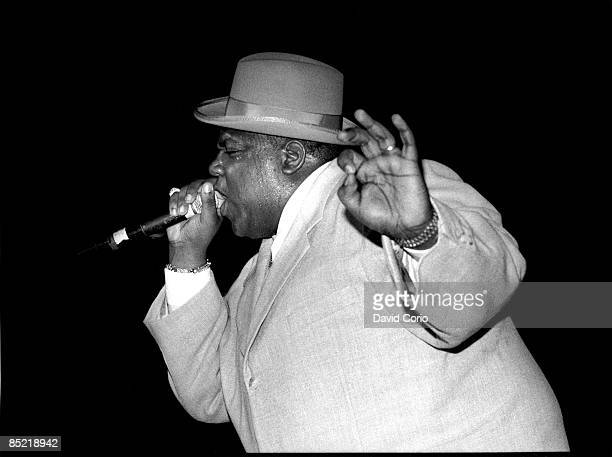 Photo of NOTORIOUS BIG Notorious BIG performing at Meadowlands New Jersey on 6291995