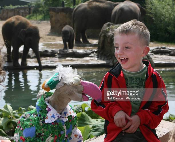 Photo Sam Noctor from Dublin is suprised by Ireland's Eurovision hopeful Dustin the Turkey at Dublin Zoo after he was a winner in the Birds Eye...