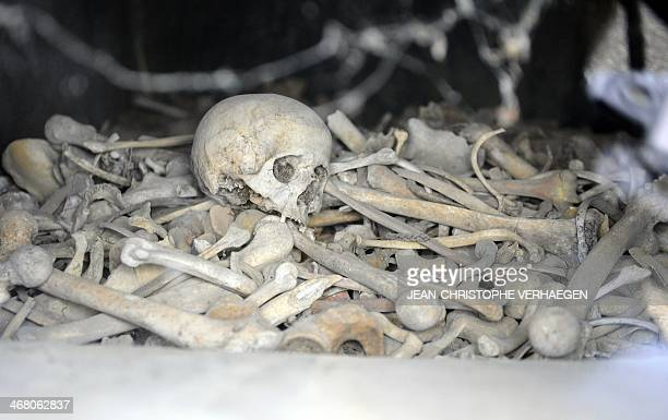 Photo shows the remains of unidentified soldiers at the ossuary of Douaumont eastern France on February 9 2014 The ossuary holds the remains of...