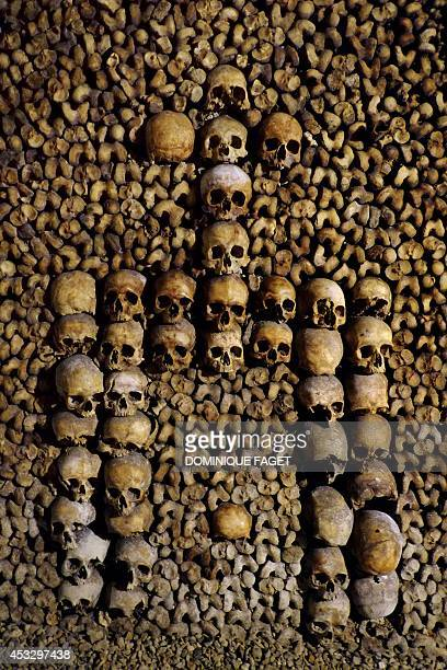 Photo taken on August 7 2014 at the Catacombs of Paris shows bones stacked and arranged These underground quarries were used to store the remains of...