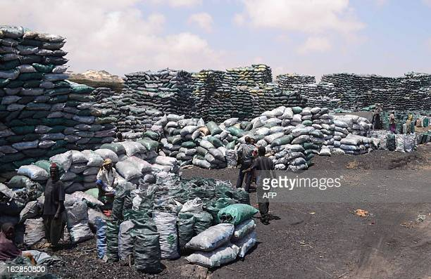 Photo taken on February 27 2013 shows Somali workers filling sacks with charcoal as they are prepared for transportation near the Kismayo seaport...