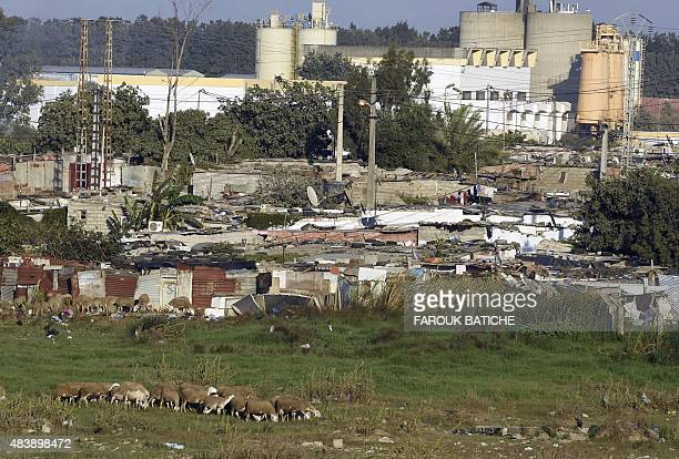 CHEBALLAH A photo taken on July 28 2015 shows the area of Remli which is one of the largest slums in the Algerian capital Algiers Faced with a burst...