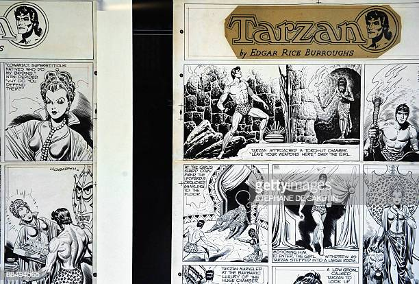 A photo taken on June 15 2009 shows a comic book presented during the exhibition 'Tarzan' at the Quai Branly museum in Paris held from June 16 to...