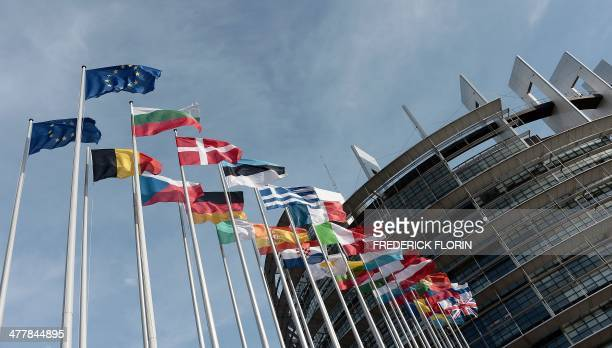 A photo taken on March 11 2014 shows the European Parliament in Strasbourg eastern France AFP PHOTO / FREDERICK FLORIN
