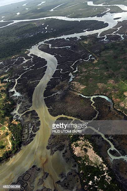 A photo taken on March 22 2013 shows creeks and vegetations devastated as a result of spills from oil thieves and Shell operational failures in Niger...