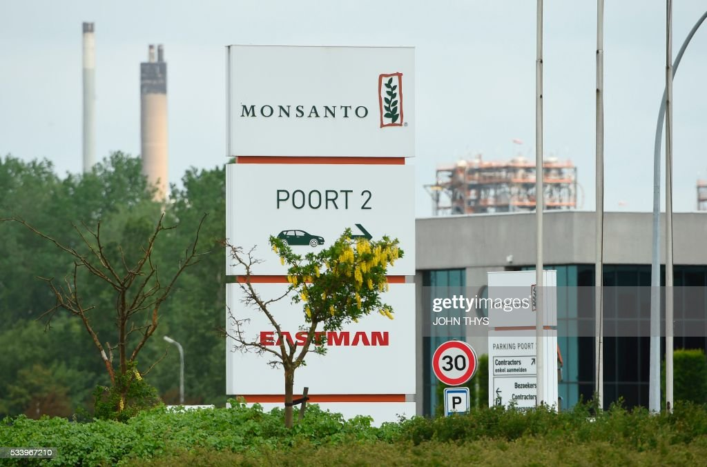 A photo taken on May 24, 2016 in Lillo near Antwerp shows the Monsanto logo at the firm Manufacturing Site and Operations Center. US agribusiness giant Monsanto Co. rejected May 24 the $62 billion takeover bid by Germany's Bayer AG as too low, but said it was willing to entertain further talks on a merger. Monsanto chairman and chief executive Hugh Grant said in a statement that the offer 'significantly undervalues our company' and does not give enough assurance on how Bayer would finance the deal or overcome possible regulatory challenges. THYS