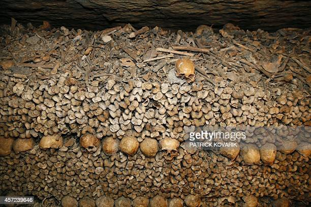 A photo taken on October 2014 at the Paris catacombs of Paris shows bones stacked and arranged The underground quarries were used to store the...