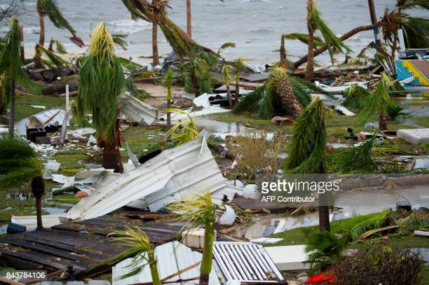 A photo taken on September 6 2017 shows destroyed palm trees outside the 'Mercure' hotel in Marigot on the Bay of Nettle on the island of SaintMartin...
