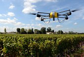 A photo taken on September 9 2014 shows a drone flying over vineyards of the Pape Clement castle belonging to Bordeaux winemaker Bernard Magrez in...