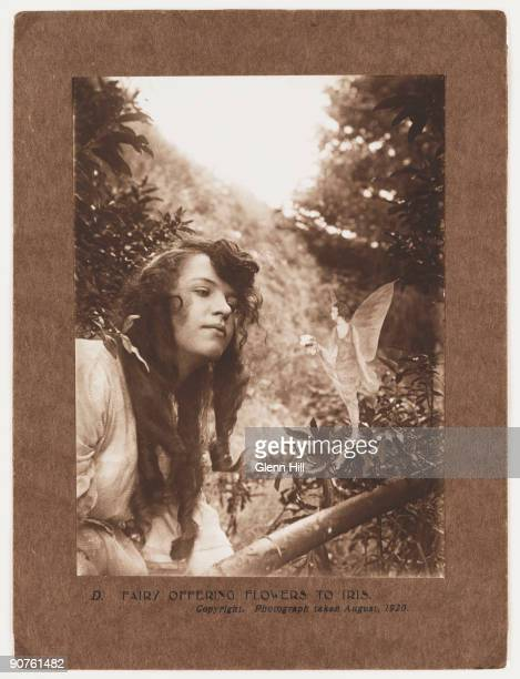 A photograph of Elsie �Iris� Wright taken by Frances 'Alice' Griffiths A fairy stands on a tree branch offering Elsie a small bunch of flowers After...