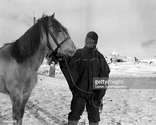 A photograph of Patrick Keohane with the pony Jimmy Pigg taken at Cape Evans taken during the last tragic voyage to Antarctica by Captain Robert...