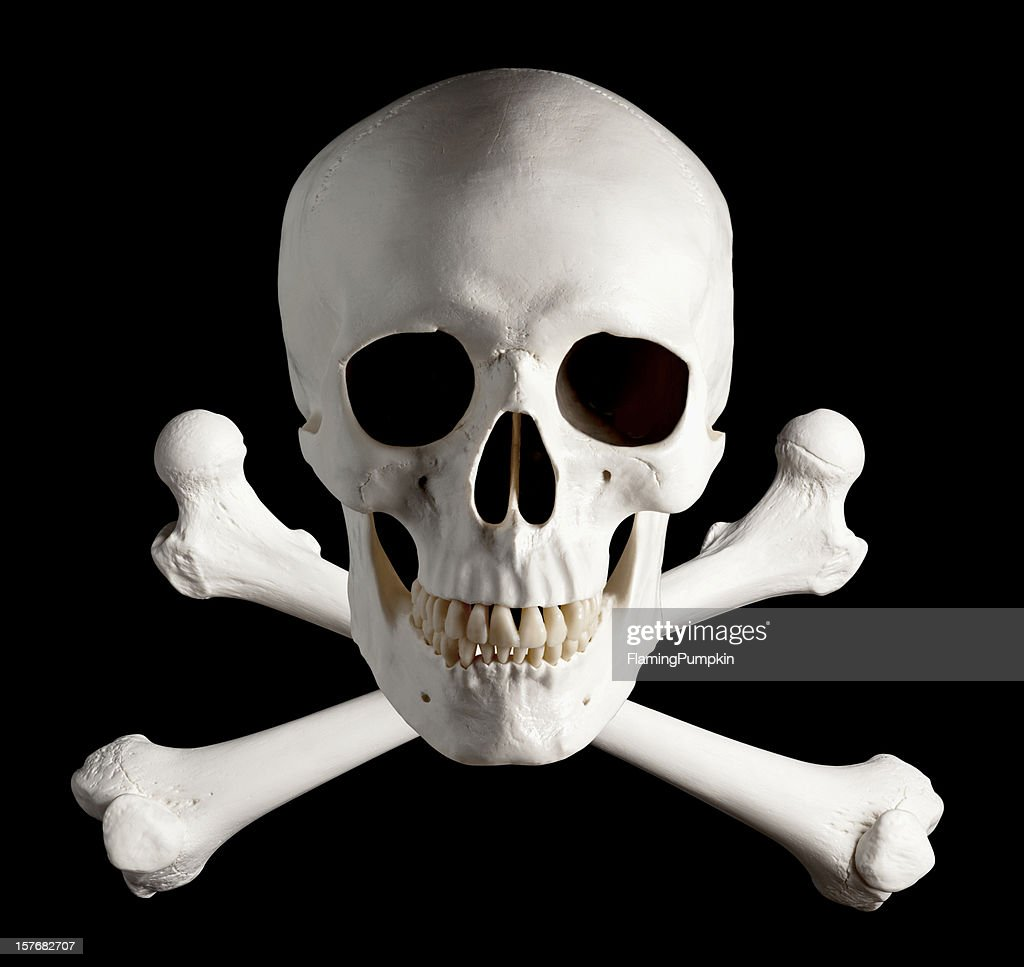 Photograph of Pirate Skull and Crossbones. : Stock Photo