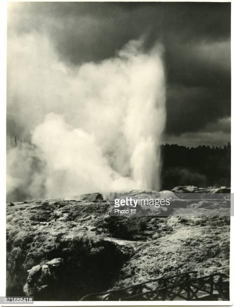 Photograph of the Pohutu Geyser in the Whakarewarewa Thermal Valley Rotorua Dated 1909