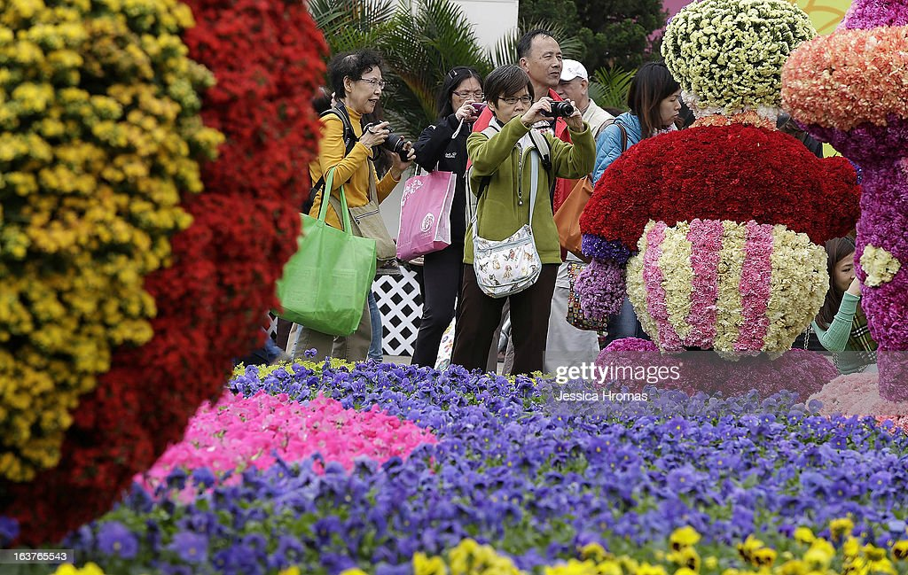 Photographer enthusiasts photograph flowers sculptures at the 2013 Hong Kong Flower Show at Victoria Park on March 15, 2013 in Hong Kong, Hong Kong. The 2013 Hong Kong Flower Show opened today and will continue until March 24, 2013.