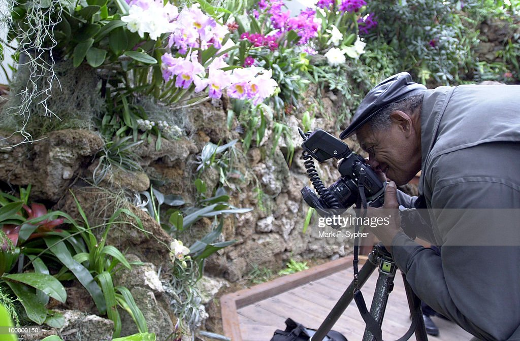 A photographer who wished to go unnamed, shoots wildlife in the U.S. Botanic Garden on Thursday.