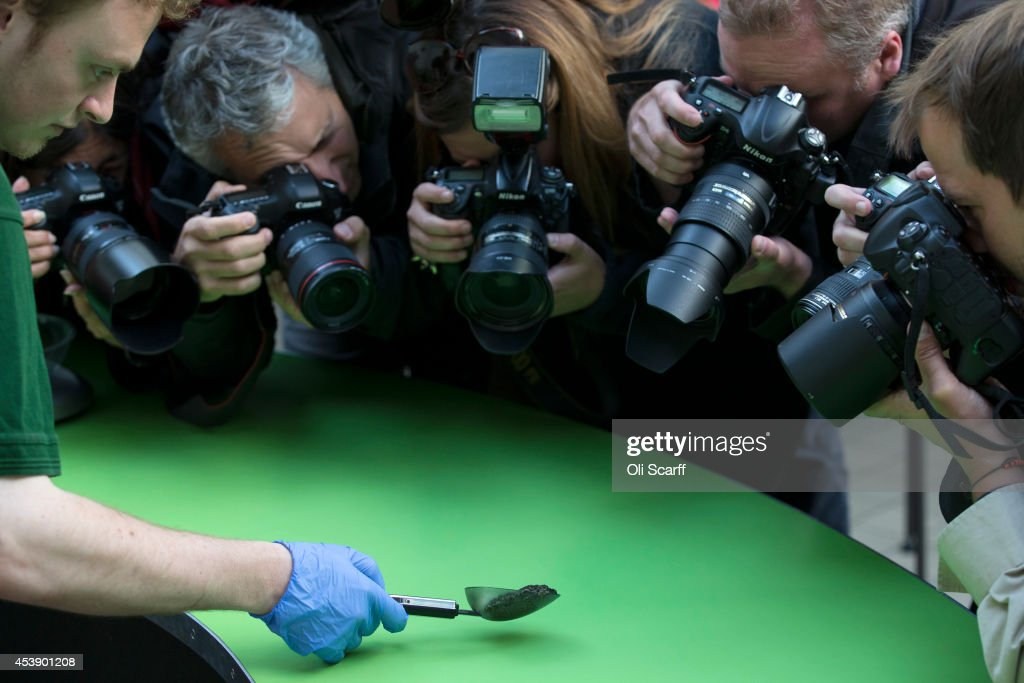 Photographers capture a 'mossy frog' being weighed at 37g during the annual weight-in ZSL London Zoo on August 21, 2014 in London, England. The height and mass of every animal in the zoo, of which there are over 16,000, is recorded and submitted to the Zoological Information Management System. This is combined with animal measurement data collected from over 800 zoos and aquariums in almost 80 countries, from which zoologists can compare information on thousands of endangered species.
