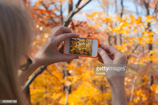 Photographing Fall Foliage