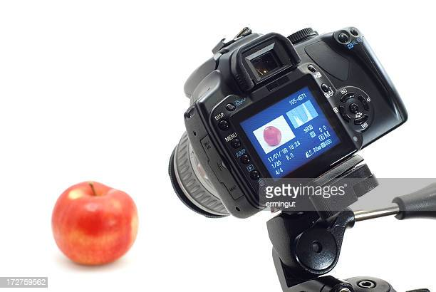 Photographing object in photo studio