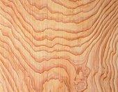Photography of Japanese cedar wood grain, Close Up