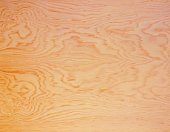 Photography of pine wood grain, Close Up