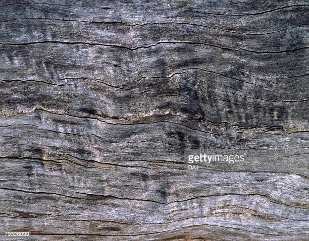 Photography of wood grain, Close Up