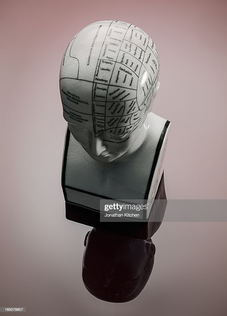 Phrenology Head on red background : Stock Photo