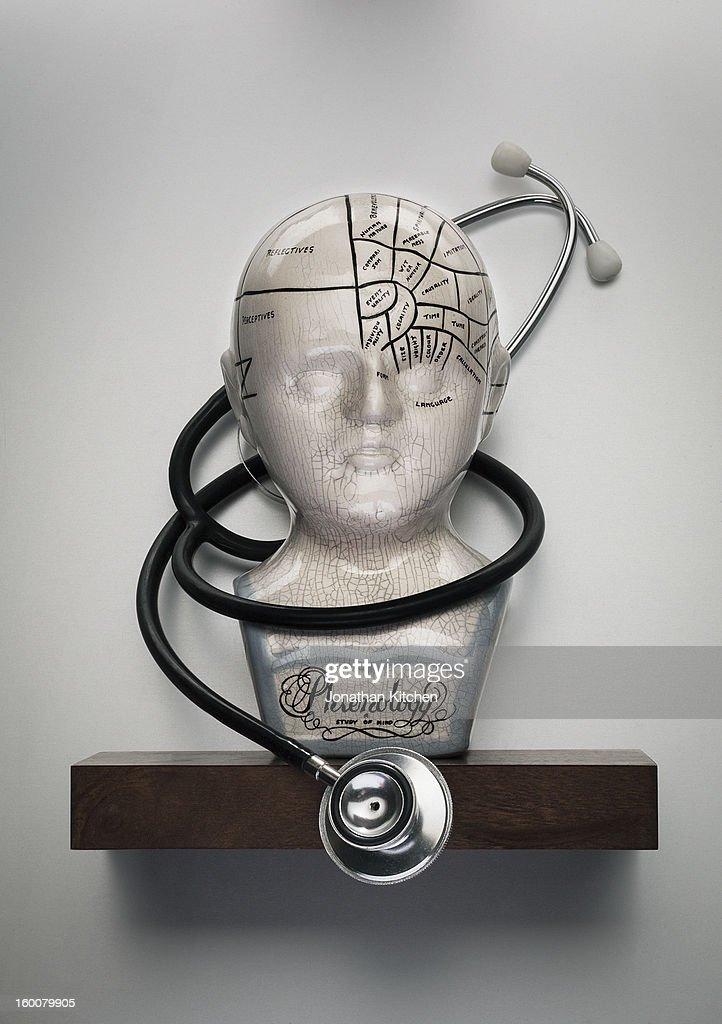 Phrenology head with Stethoscope : Stock Photo