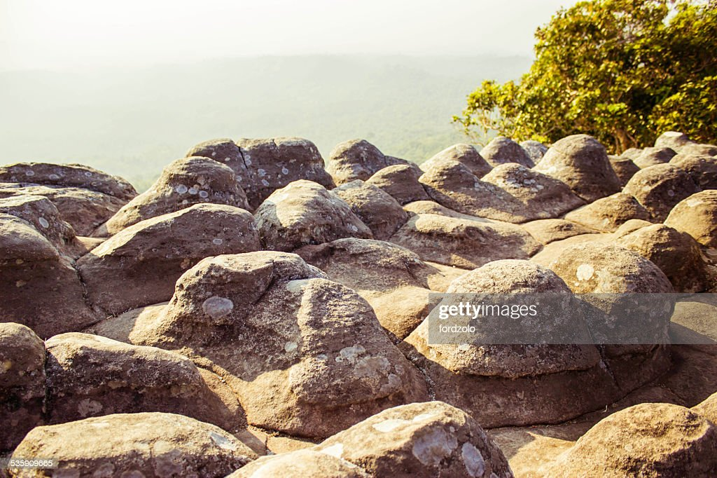 Phuhinrongkla National Park, THAILAND : Stock-Foto