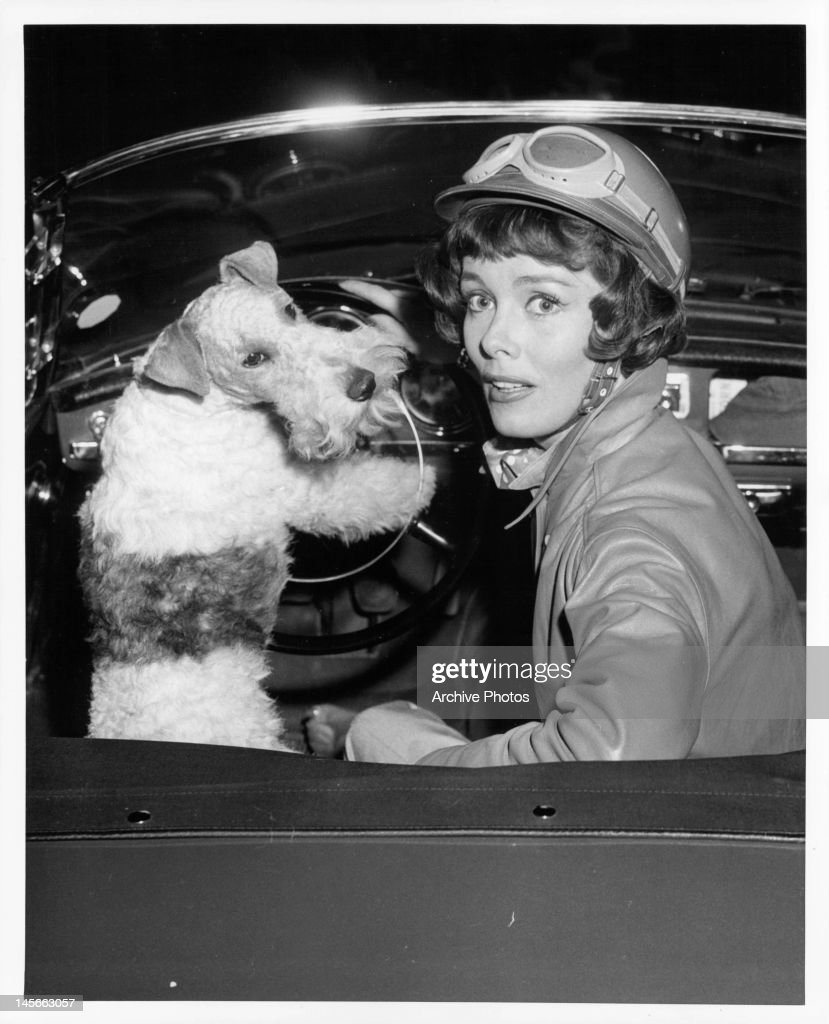 Phyllis kirk sitting in passenger seat as asta the pup drives in a scene from the