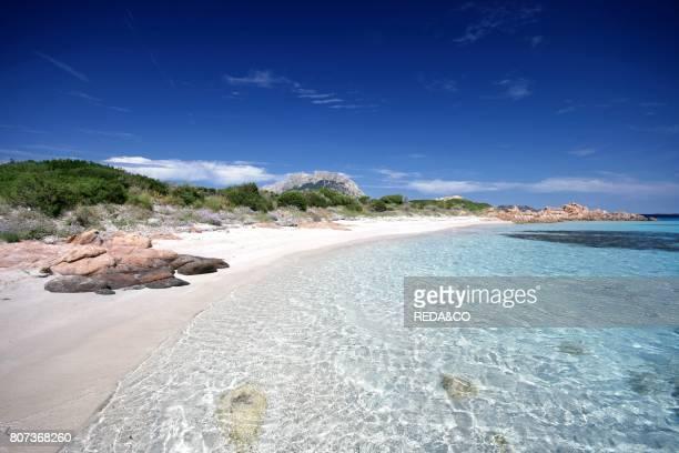 Piana island Loiri Porto San Paolo Sardinia Italy