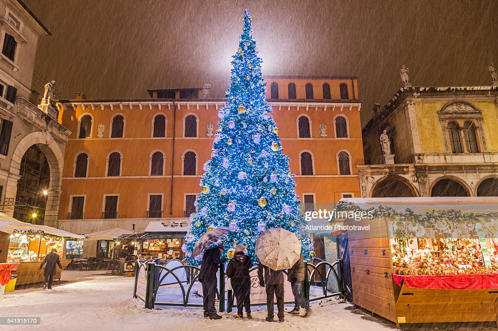 Charming Piazza (square) Dei Signori (also Known As Piazza Dante), Christmas Tree  During A Snowstorm