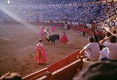 Picador and bull in the bullfighting arena Jerez de la Frontera Andalusia Spain