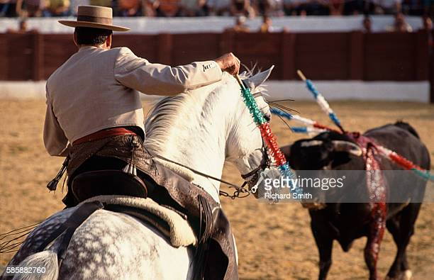 Picador Preparing to Spike Bull