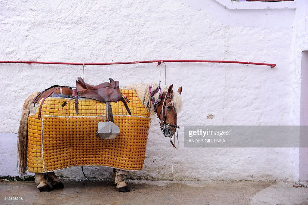 A Picador's horse waits before the first corrida of the San Fermin Festival in Pamplona on July 7 2016 The festival is a symbol of Spanish culture...