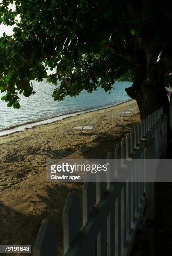 Picket fence at the seaside, South West Bay, Providencia, Providencia y Santa Catalina, San Andres y Providencia Department, Colombia : Foto de stock
