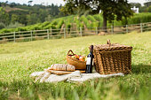 Picnic basket on grass with food and drink on blanket. Picnic lunch outdoor in a nice field on sunny day with bread, fruit and bottle of red wine. Pic nic on green grass with landscape in the backgrou