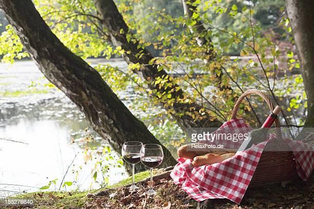 Picknick-Korb mit baguettes und Weingläser und unter Bäumen auf See