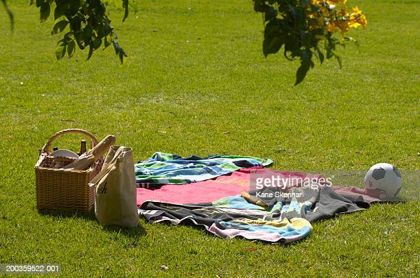 Picnic, blanket and football on grass