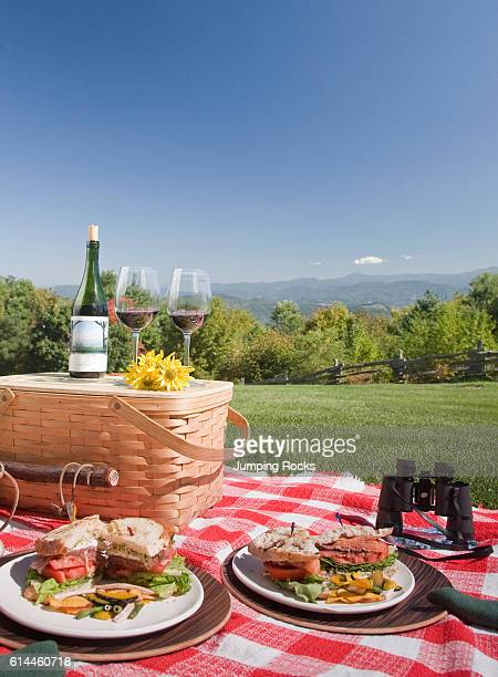 Picnic food on plates on red check tablecloth in rural setting Smoky Mountains North Carolina USA