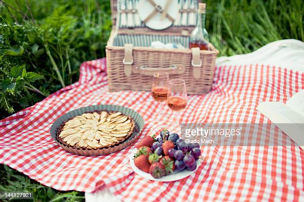 Picnic in meadow with apple tarte