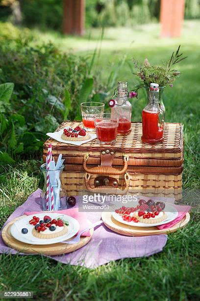 Picnic in park with berry pies and fresh drinks