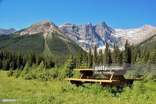 A picnic in the Canadian Rockies.