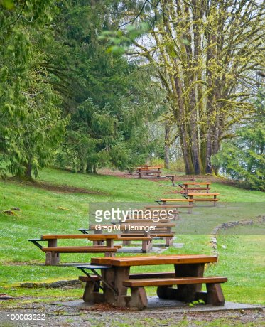 Picnic Table Armada : Stock Photo